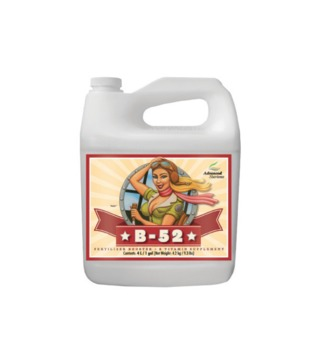 Advanced Nutrients B - 52 10L 2